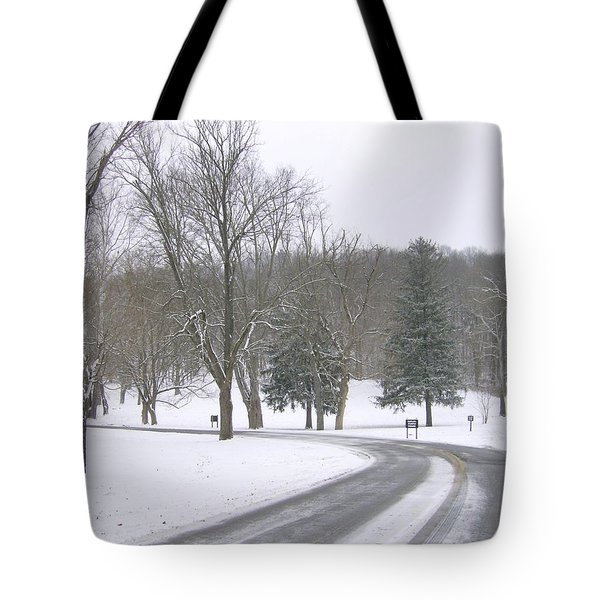 Tote Bag featuring the photograph A Cold Winter's Day by Skyler Tipton