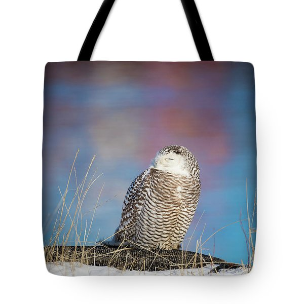 A Colorful Snowy Owl Tote Bag