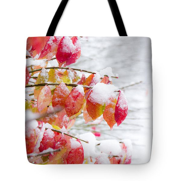 A Colorful Winter Tote Bag
