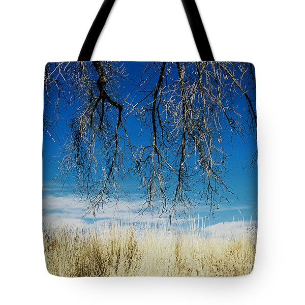 A Comfortable Place Tote Bag