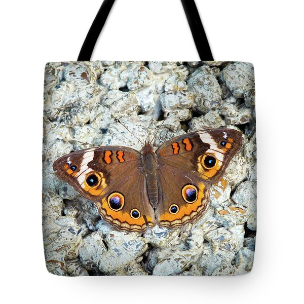 A Common Buckeye Tote Bag