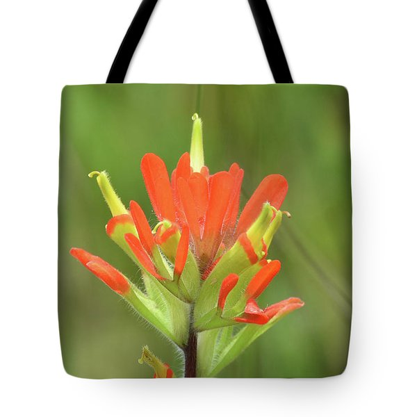 Tote Bag featuring the photograph A Common Michigan Flower by Sally Sperry