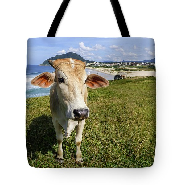 A Cow At The Beach Tote Bag