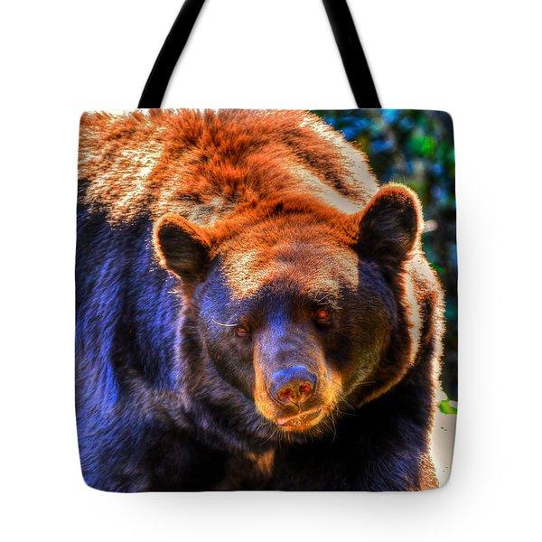 A Curious Black Bear Tote Bag