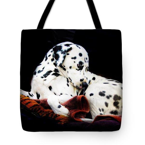 A Dalmatian Prince Tote Bag by Blair Stuart