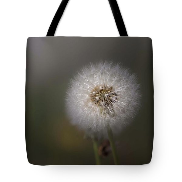 Tote Bag featuring the photograph A Dandelion by Lora Lee Chapman