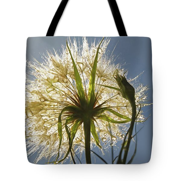 Tote Bag featuring the photograph A Dandy New Day by Donna Kennedy