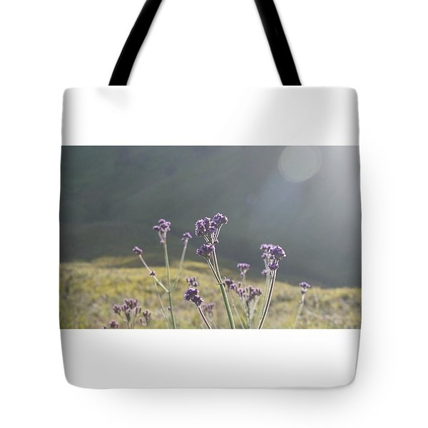 A Day Without Sunshine Is Like, Tote Bag