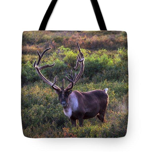 A Denali Icon Tote Bag