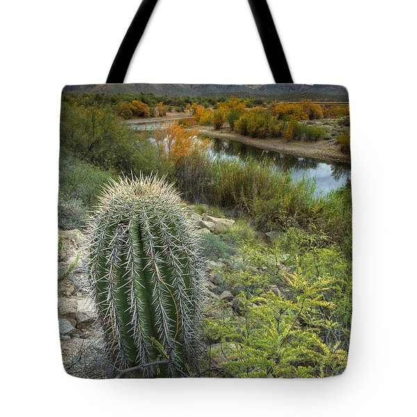 A Desert Oasis  Tote Bag by Sue Cullumber