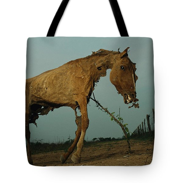 A Desiccated Horse Carcass Propped Tote Bag