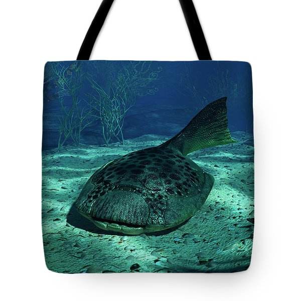 A Drepanaspis On The Bottom Tote Bag by Walter Myers