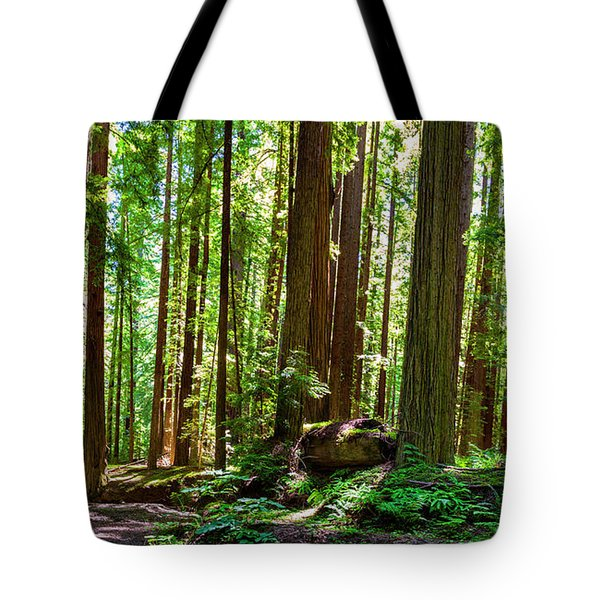 A Family Of Redwoods Panorama Tote Bag