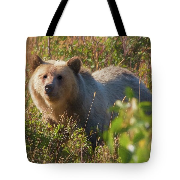 A  Female Grizzly Bear Looking Alertly At The Camera. Tote Bag