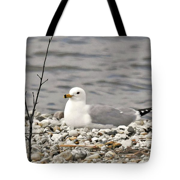 Tote Bag featuring the photograph A Few Moments Of Peace by Sally Sperry