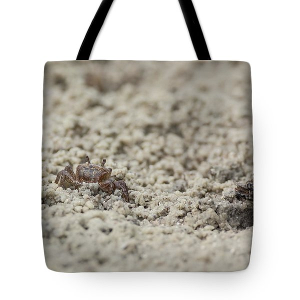 A Fiddler Crab In The Sand Tote Bag