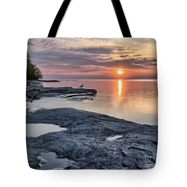 A Flat Rock Sunset With Seagull Tote Bag