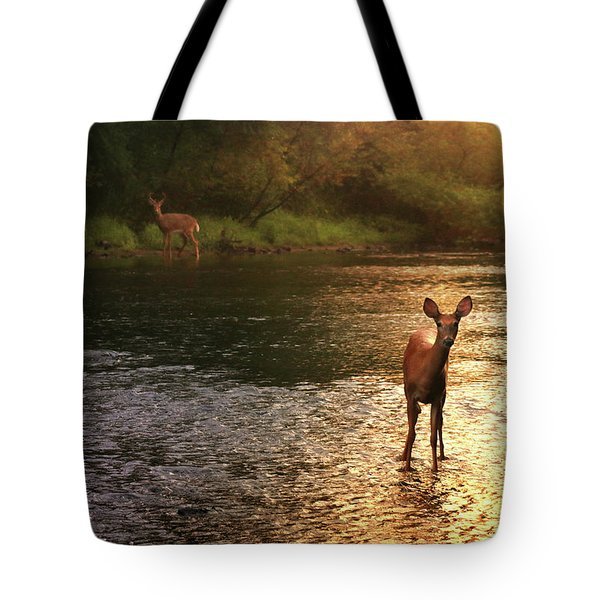 A Fleeting Moment Tote Bag