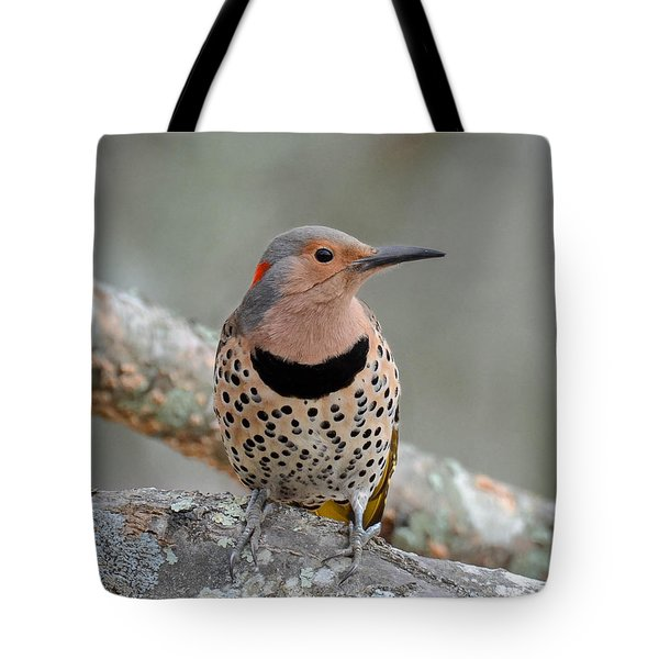 A Flicker Of Sunshine In Winter Tote Bag by Amy Porter