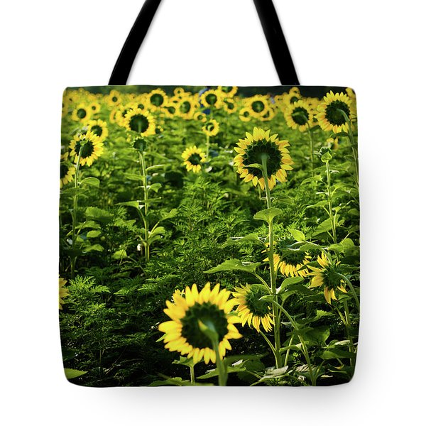 Tote Bag featuring the photograph A Flock Of Blooming Sunflowers by Dennis Dame