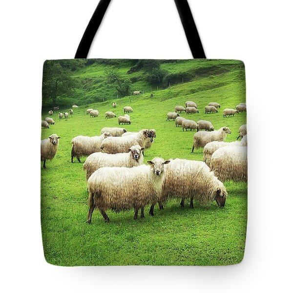 A Flock Of Sheep Tote Bag