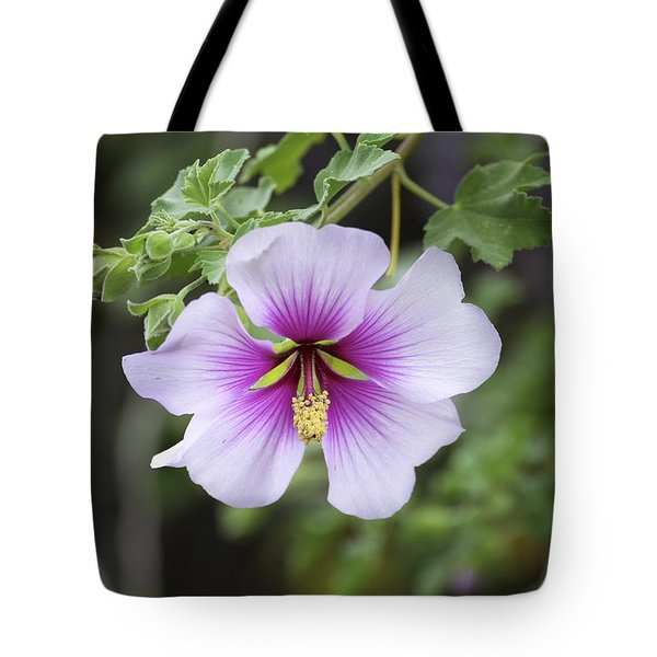 Tote Bag featuring the photograph A Flower by Alex King