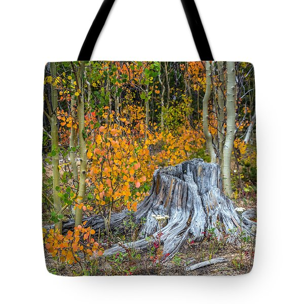 A Forest Of Color Tote Bag by Stephen  Johnson