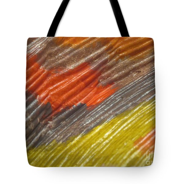 A Fraction Of Treasures 9 Tote Bag
