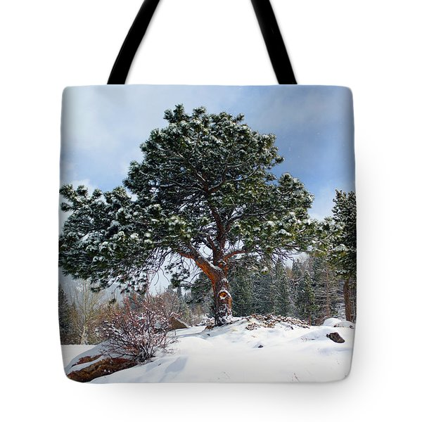 A Fresh Blanket Of Snow Tote Bag