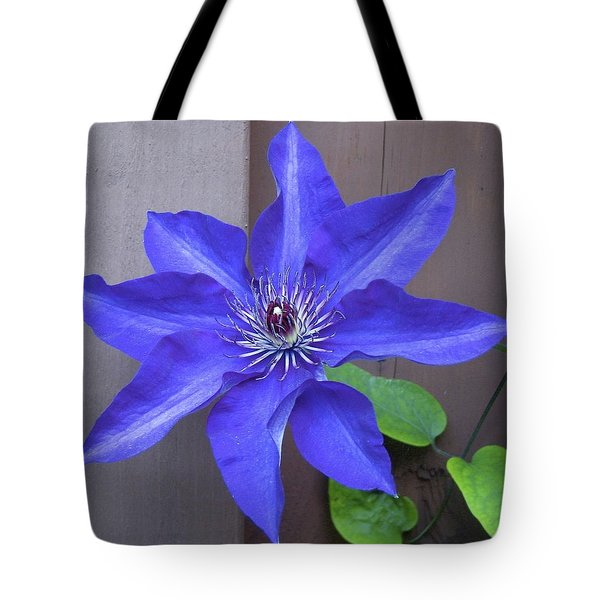 A Friend From Next Door Tote Bag