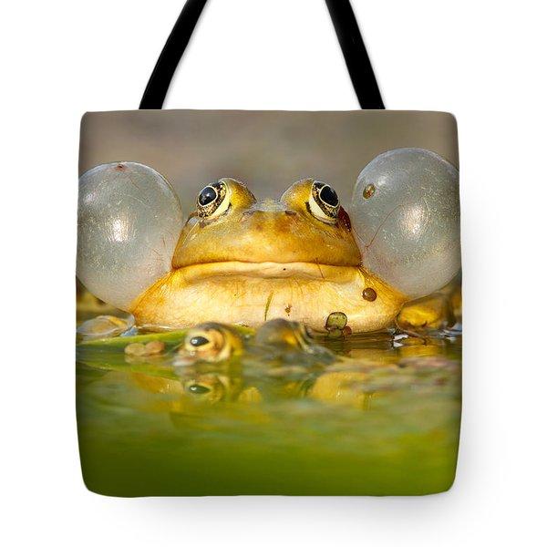 A Frog's Life Tote Bag