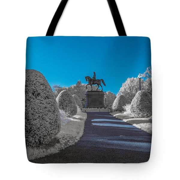 A Frosted Boston Public Garden Tote Bag