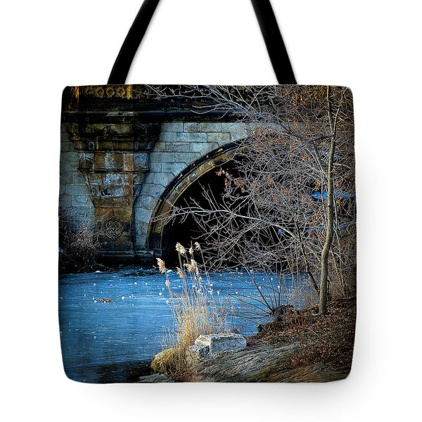 A Frozen Corner In Central Park Tote Bag