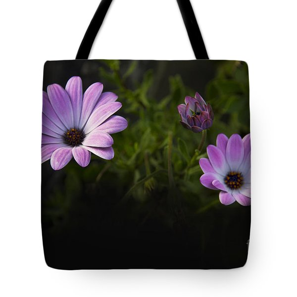 A Garden To Remember II Tote Bag
