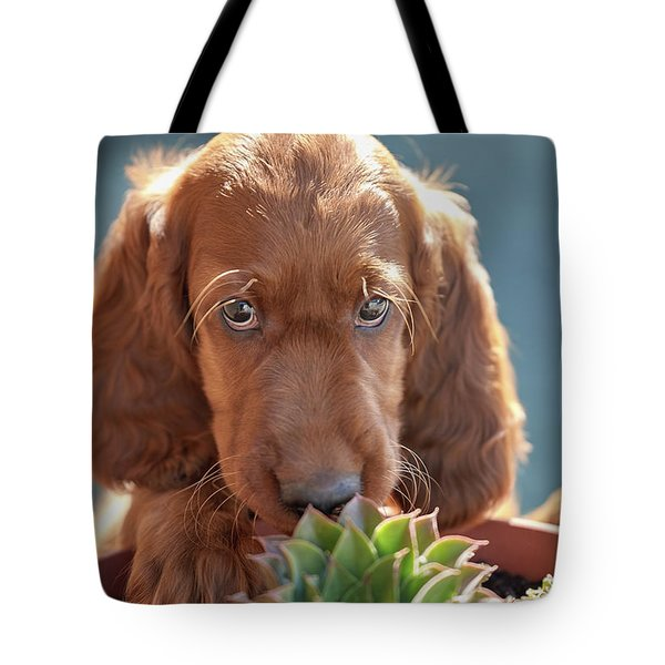 A Gardener Tote Bag