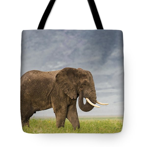 Tote Bag featuring the photograph A Gentle Giant by Sandra Bronstein