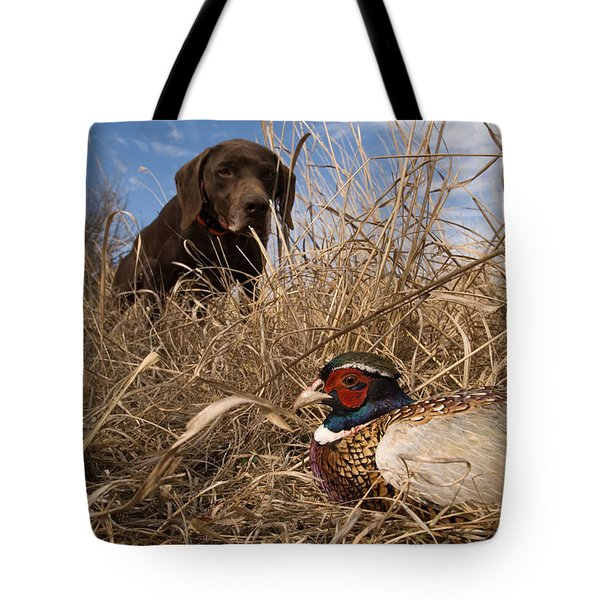 A German Shetland Finds A Ring Necked Tote Bag