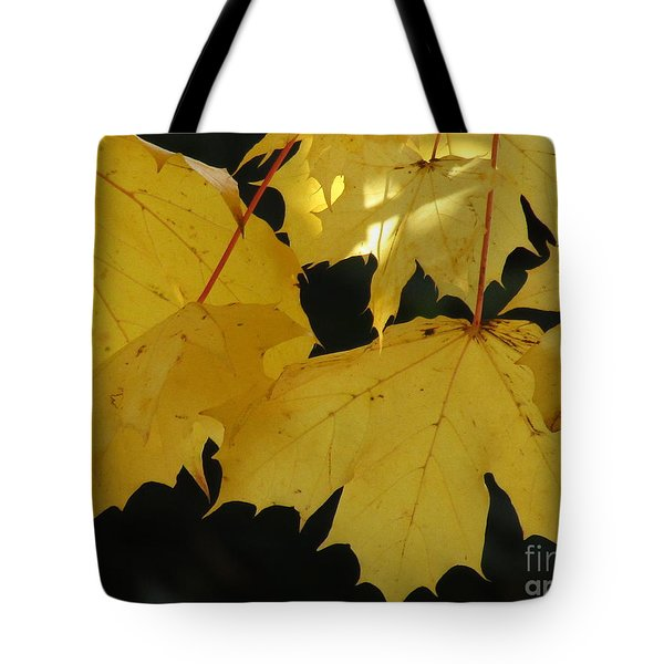 A Glimpse Of Light Tote Bag