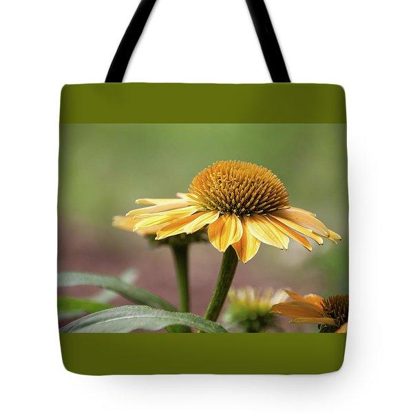 A Golden Echinacea -  Tote Bag