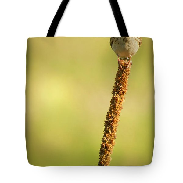 Tote Bag featuring the photograph A Great Sense Of Balance IIi by John De Bord