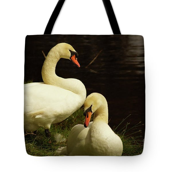A Handsome Pair Tote Bag