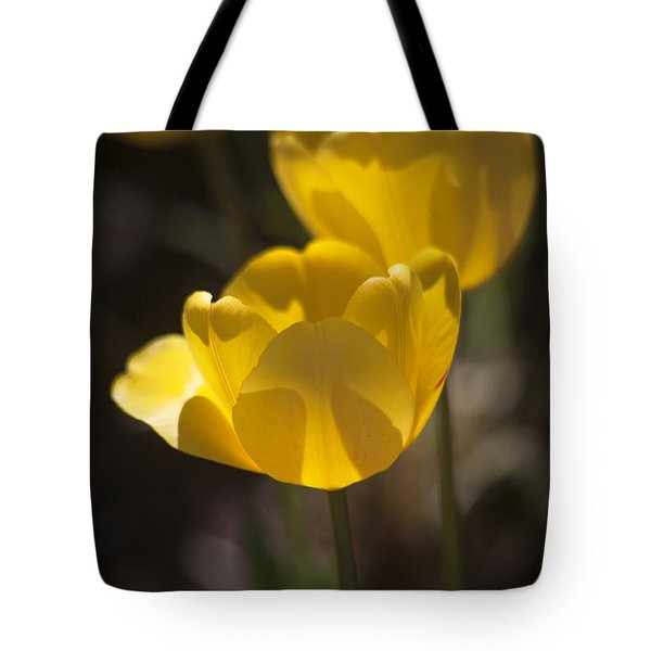A Happy Spring Moment Tote Bag