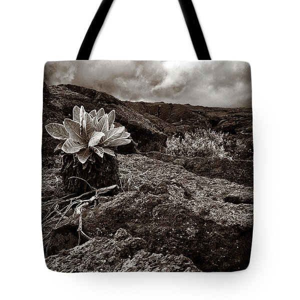 A Hard Existence - Sepia Tote Bag