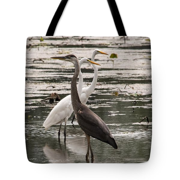 A Heron And Two Egrets Tote Bag