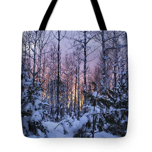 A Hidden Trail Tote Bag
