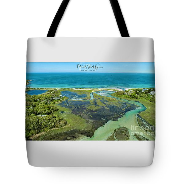 A Hidden Treasure Tote Bag