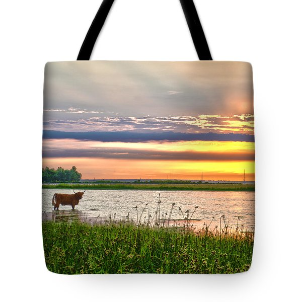 A Highland Cow In The Lowlands Tote Bag