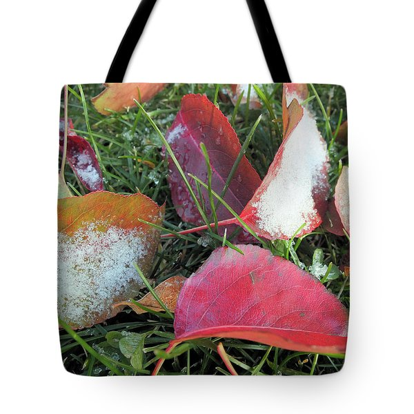A Hint Of Winter Tote Bag by Scott Kingery