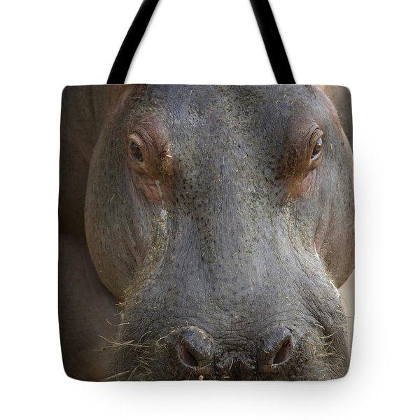 A Hippopotamus At The Sedgwick County Tote Bag by Joel Sartore