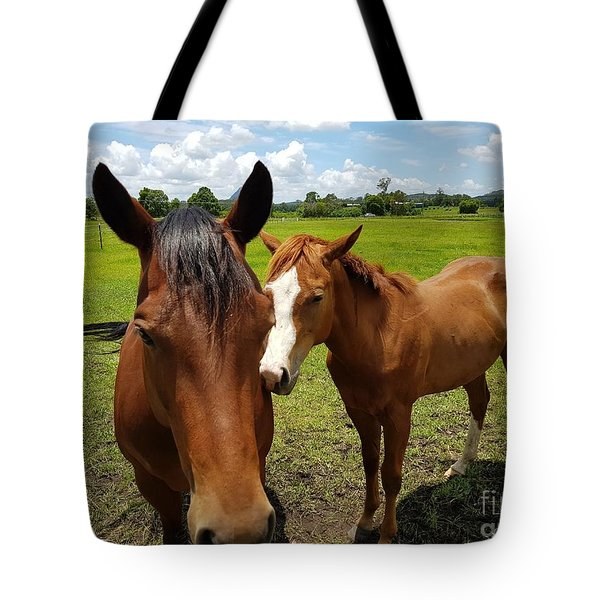 A Horse's Touch Tote Bag
